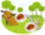 マダニの予防 西山動物病院 流山市・松戸市・柏市・野田市