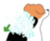 シャンプーの仕方  西山動物病院皮膚科専門診察 流山市・松戸市・柏市・野田市・三郷市・千葉・埼玉.png