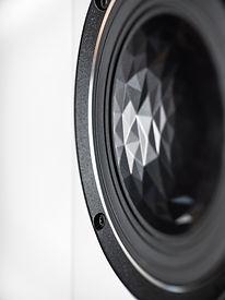 ELAC Vela FS 409-2 Details-3.jpg