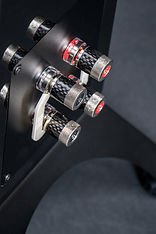 ELAC Concentro S Details  9-19 - 10.jpg