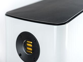 ELAC Vela FS 409-2 Details-5.jpg