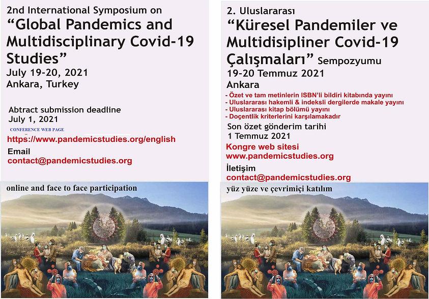 pandemic twin.jpg
