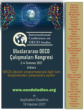 OECD AFİŞ tr.jpg