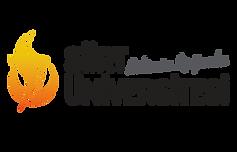 yeni-logo-siirt-201886105157526.png
