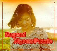 Zigsaw Puzzle album sugami