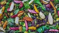 Roast_Vegetable_Salad_20161215_222522-1.