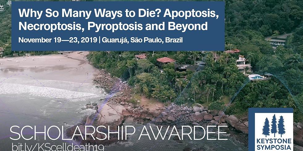 2019 Keystone Symposium: Why so many ways to die? Apoptosis, necroptosis, pyroptosis, and beyond
