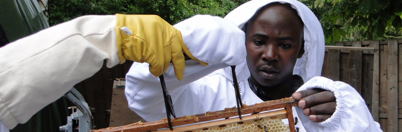 Our Beekeeping Programs_edited