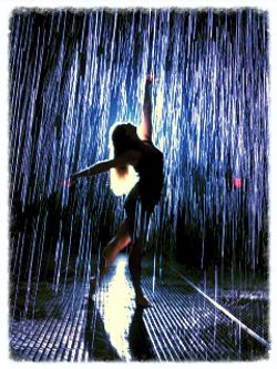 The Rain Room - M.O.M.A.