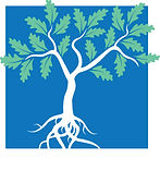 JICA logo: oak tree with leaves and root