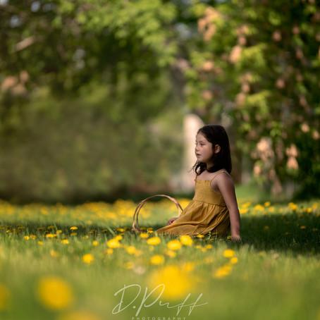 Dancing in Dandelions