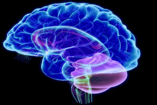 Citoquímico de líquido cefalorraquídeo