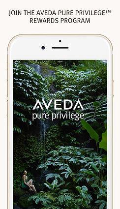 pp app.jpg