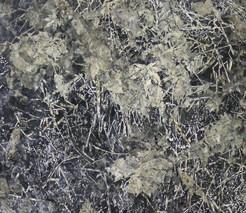 「地面」の日本画作品