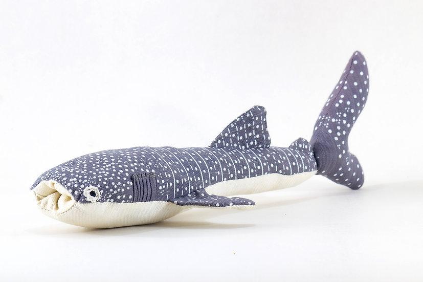 Vhali, the Whale Shark
