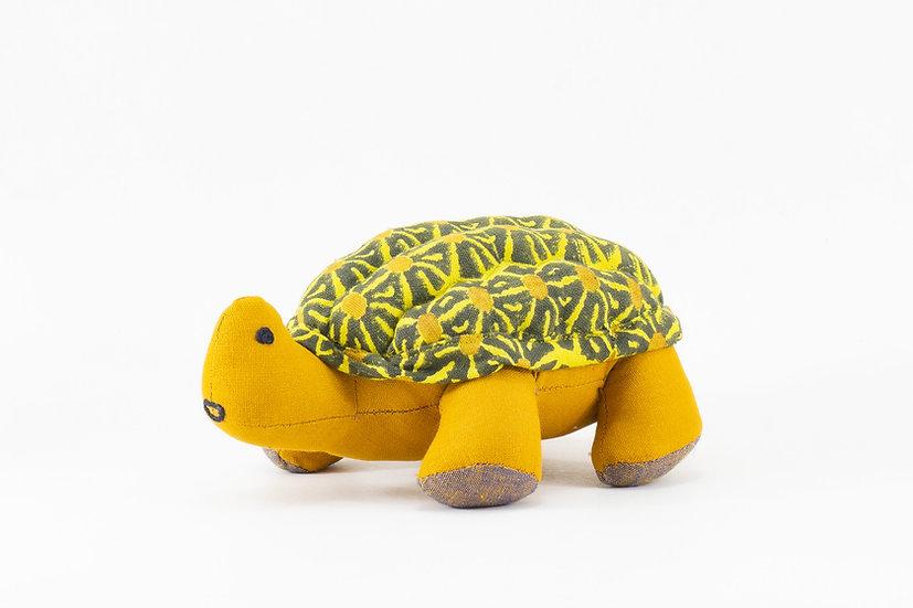 Tara, the Star Tortoise