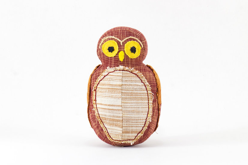 Juggi, the Jungle Owlet
