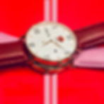 Rose watch bow2.png