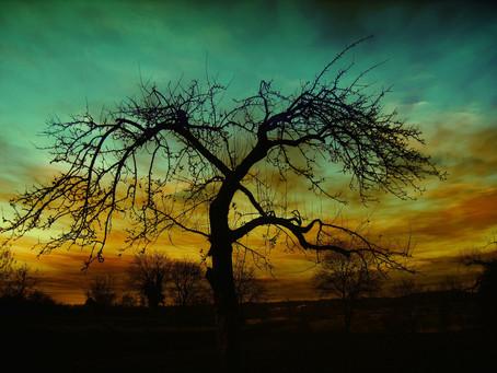 Álvares de Azevedo - Tarde de Outono
