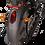 Thumbnail: True Duals Cones