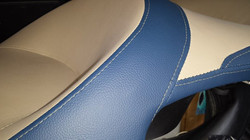 blue tan (3)