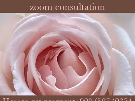Zoom Consultation Now Available
