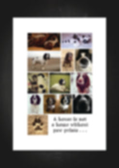 bespoke phot collage print perfect for animal lovers