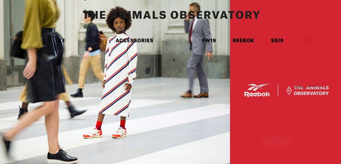 THE ANIMALS OBSERVATORY                             /REEBOK