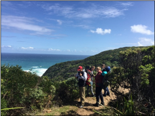 Year 9 Great Ocean Walk