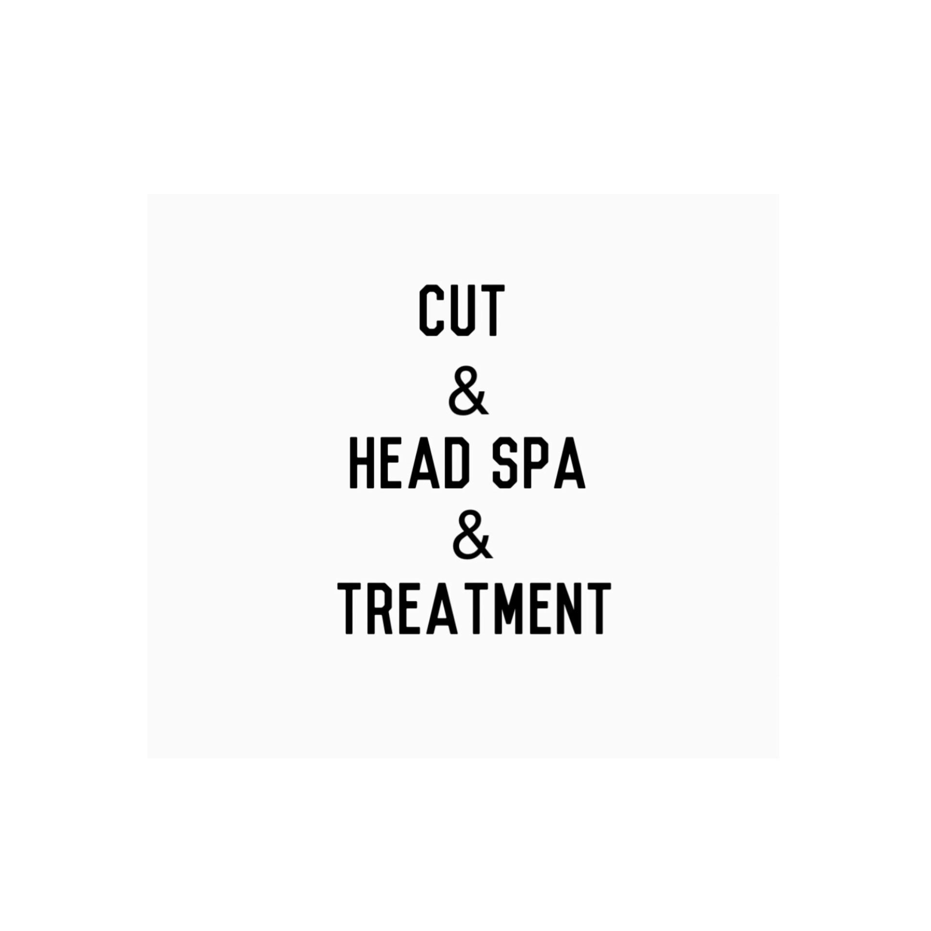 Cut & Head Spa & Treatment