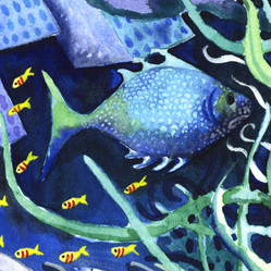 Pesce blue...