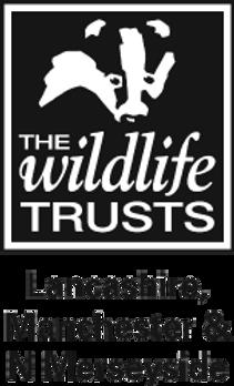 LWT_Black_Logo_edited_edited.png