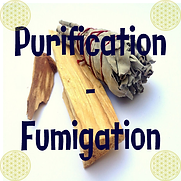 logo purif-fumig boutique.png
