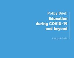 Policy Brief Naciones Unidas.jpg