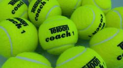 Teloon Coach