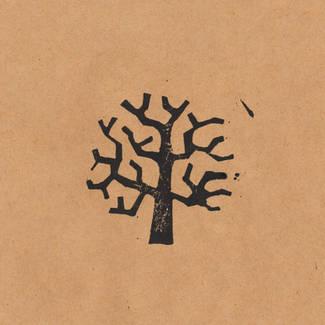 枯れ木.jpg