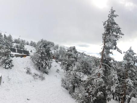 A disfrutar de la nieve, Navacerrada.