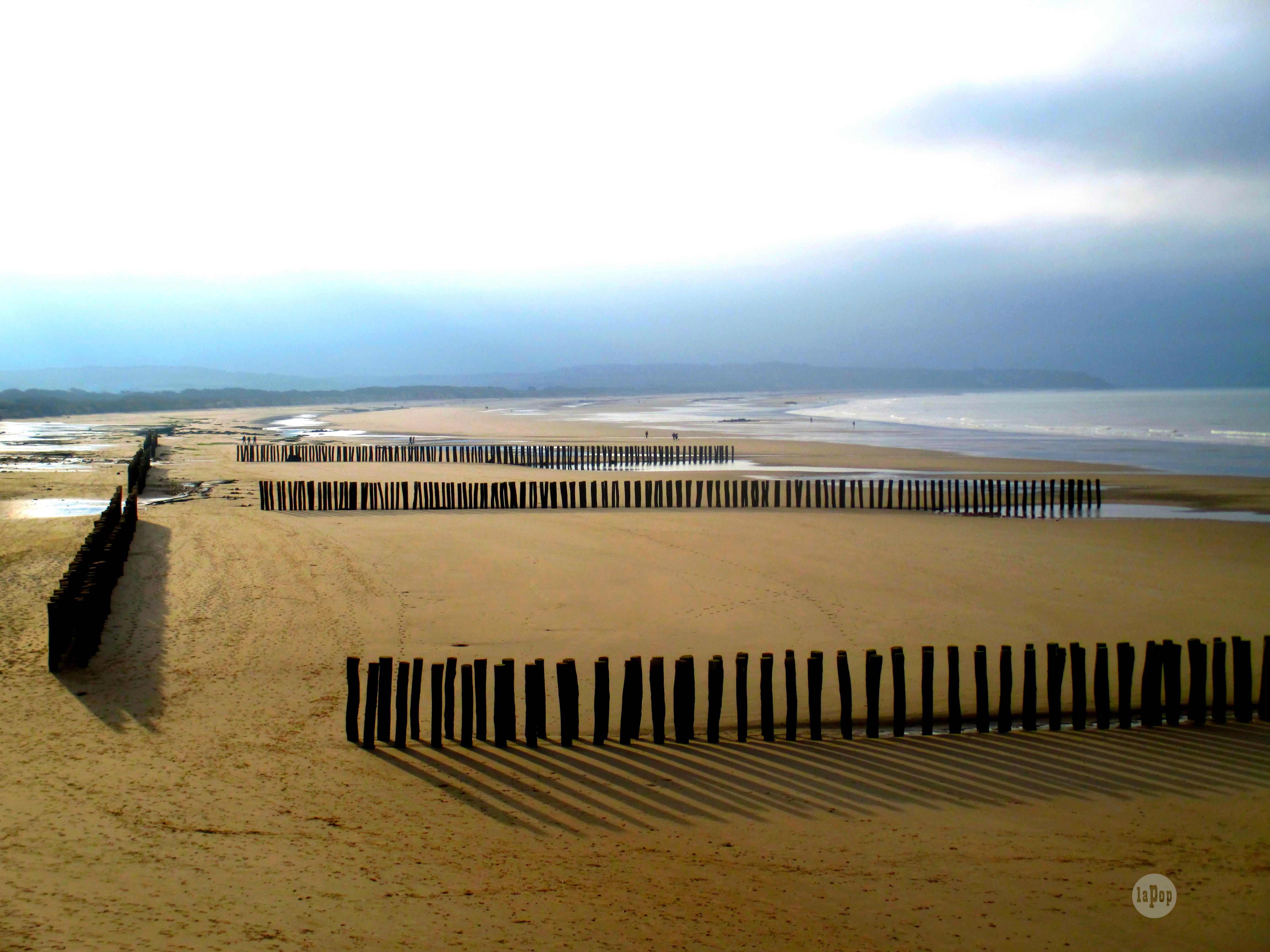 Bois, sable et mer