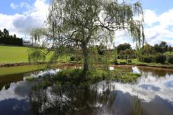 28 Maungakawa Grounds