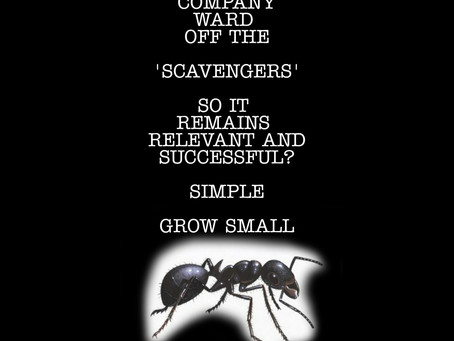 Grow small and remain relevant...