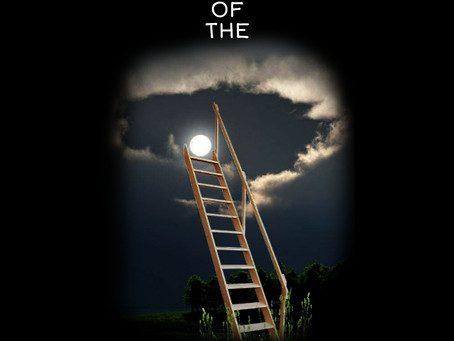 The Corporate ladder (click on the image for full content)