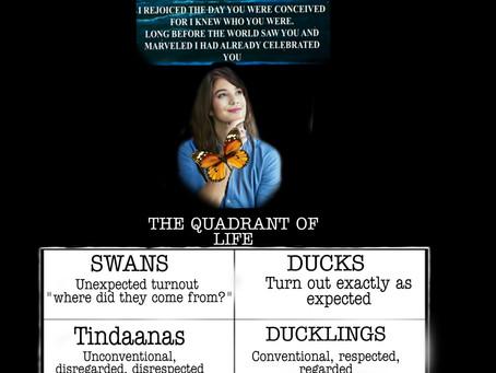 The quadrant of life...