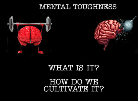 Mental Toughness, What is it? How do we cultivate it?