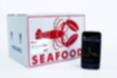 Avery Dennison TT Sensor Plus time temperature sensor