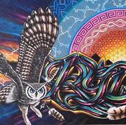 Ryden's Owl