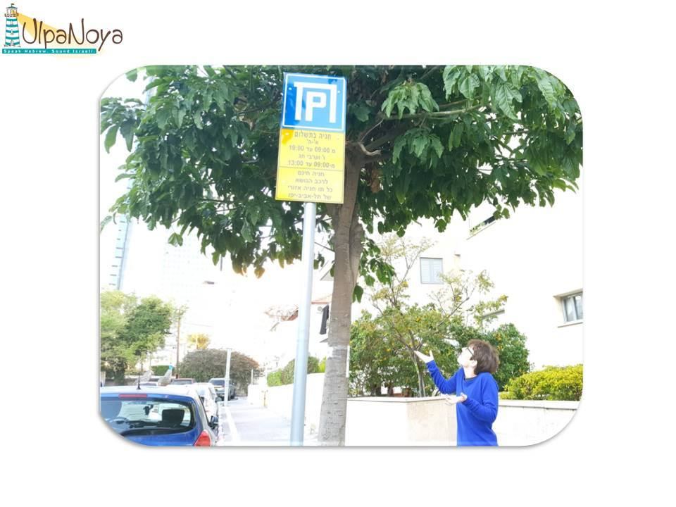 Parking Signs - Video 1 out of a 3-video series