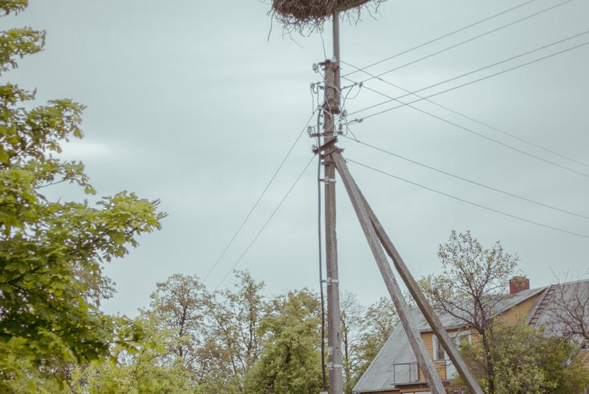 Baltojo gandro miestas - Ramygala