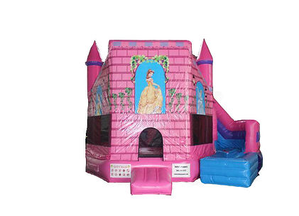 Princess Water Slide