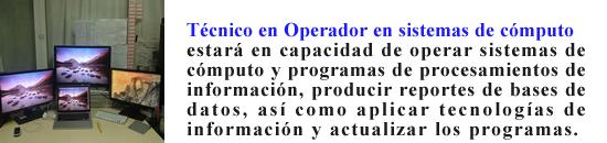 textoauxiliarsoperador2.png