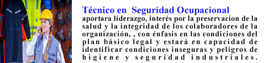 textoauxiliarsewguridad2.png